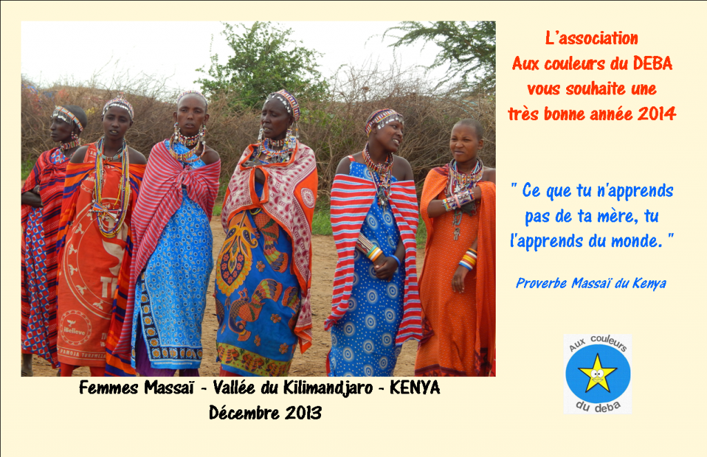 Bonne année 2014 DEBA33